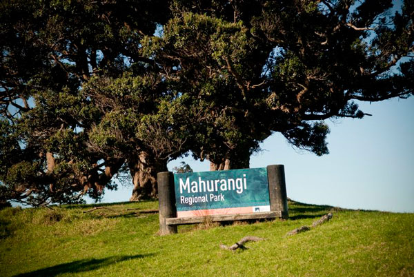 Mahurangi-park
