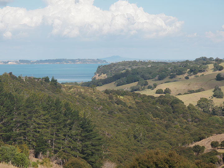 View of the Mahurangi Regional Park from your deck