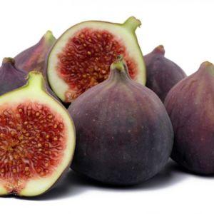 B&B-figs